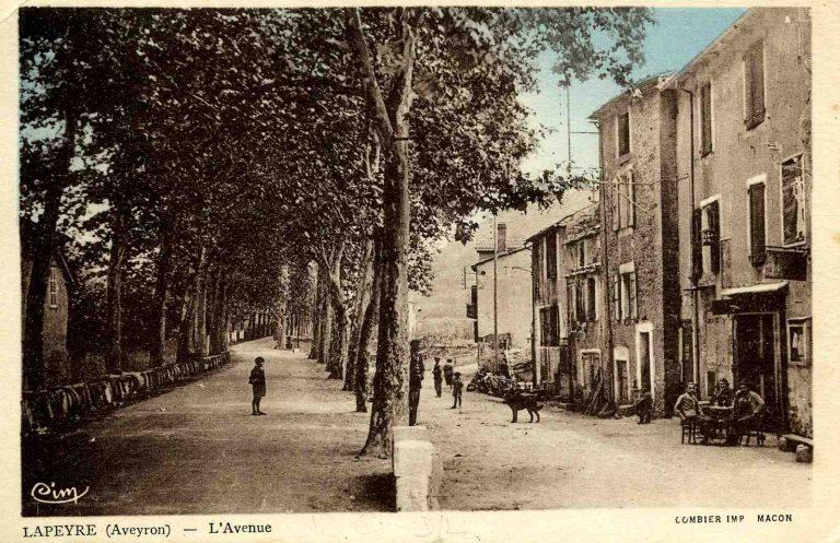 L'Avenue de Lapeyre