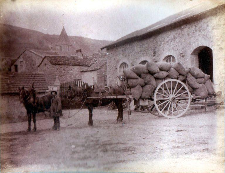 Balle de laine Usine